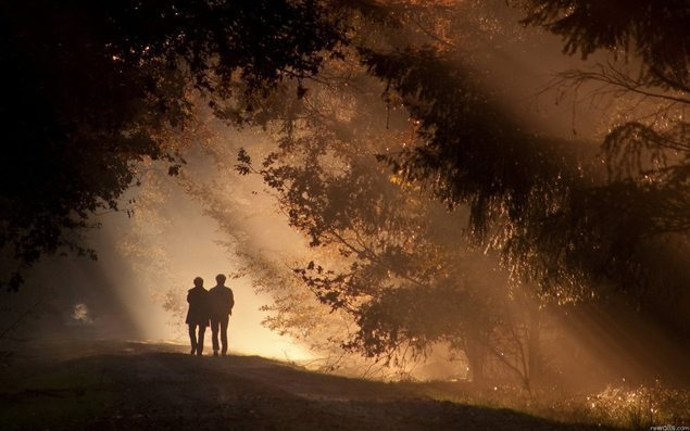 156811__the-evening-twilight-forest-park-two-walk_p